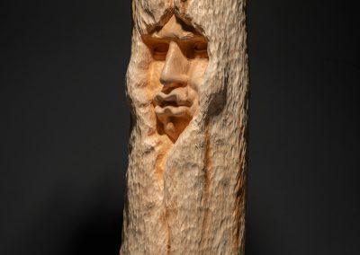 Absorbit - escultura en madera de roble